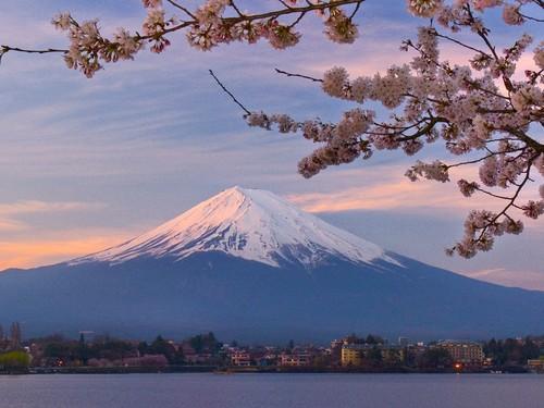 (东京出发) 富士山箱根包车一日游