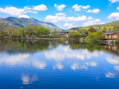 (福冈出发)九州由布院包车一日游