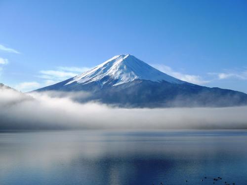 (東京出發) 富士山箱根包車一日遊