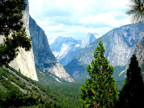 San Francisco→Yosemite One-day Tour