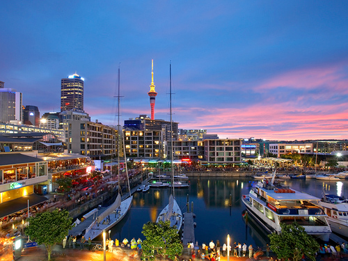 Auckland One-day Tour