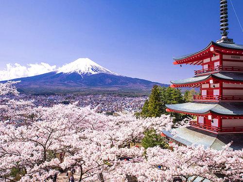 日本WIFI分享器租賃